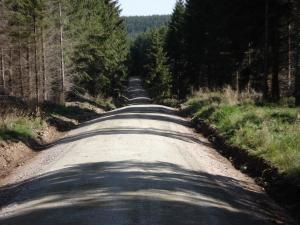 forstwirtschaftlicher Wegebau